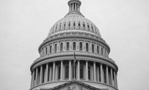 Market Buzz : US Election & Stimulus Effect